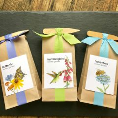 Herb and Flower Kits